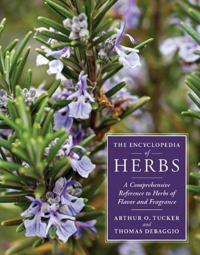 the_encyclopedia_of_herbs.jpg